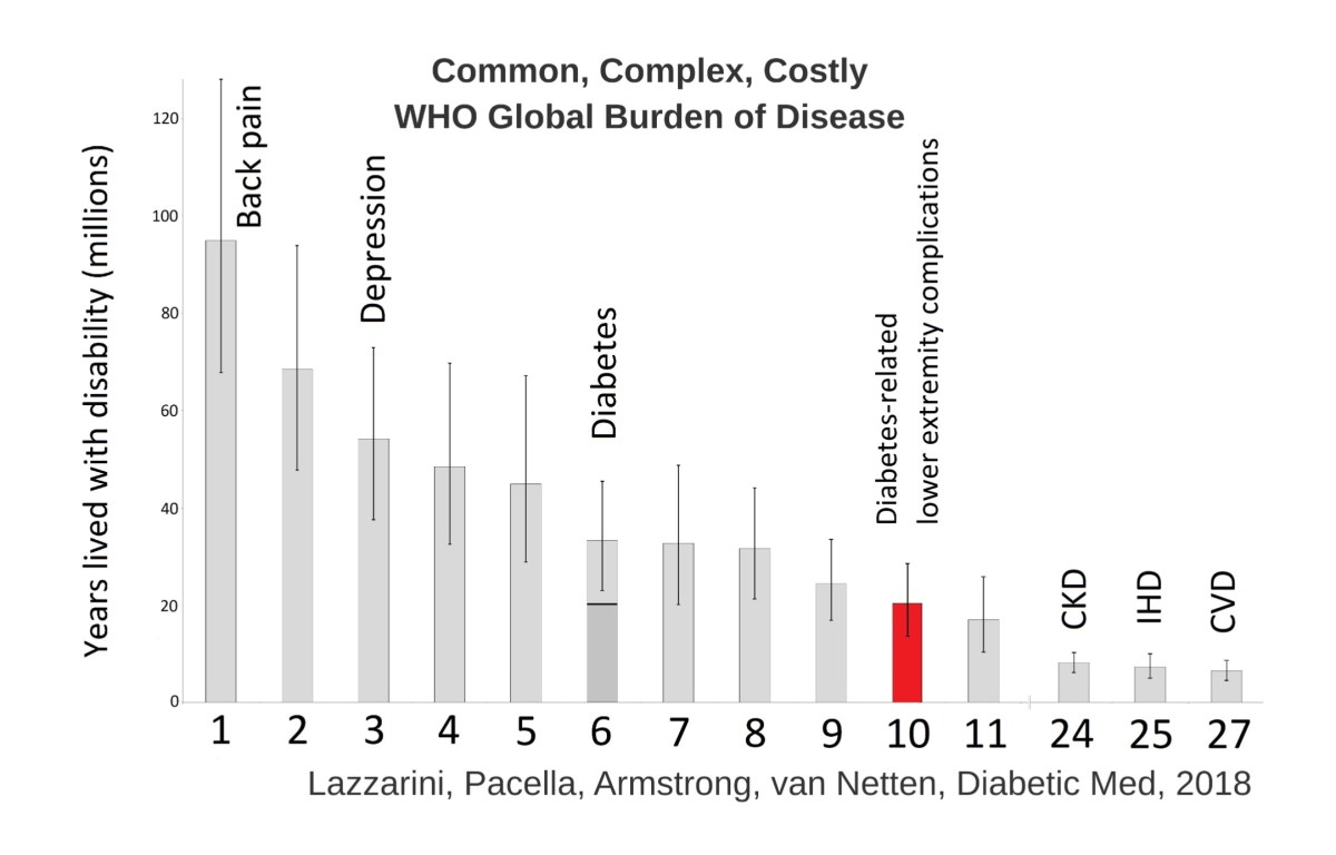 Diabetes-related lower-extremity complications are a leading cause of the global burden of disability. #WHO @APMA @FootInDiabetes @KeckMedUSC @USC